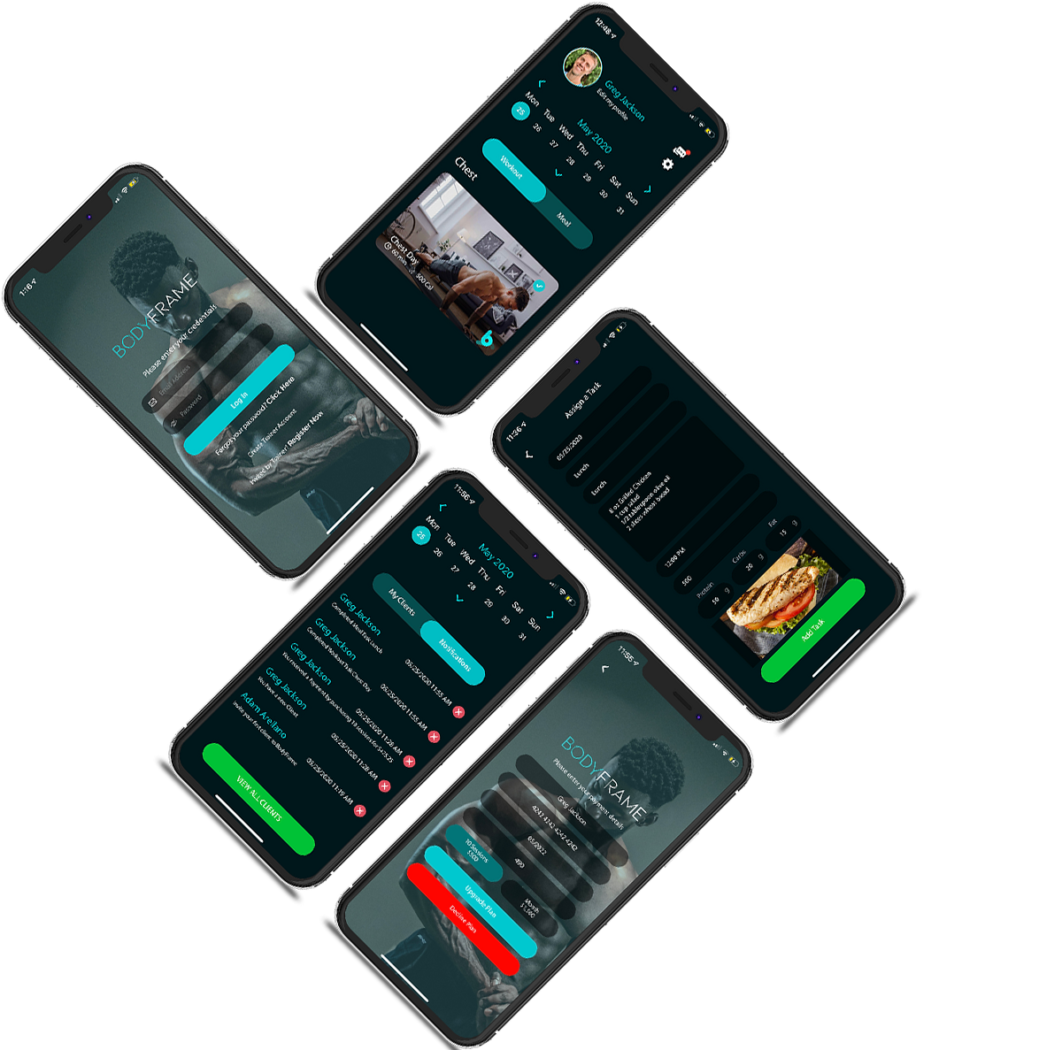 bodyframe app on screen